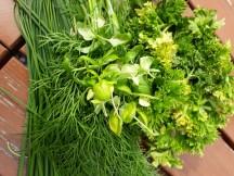 grönsakssalt2